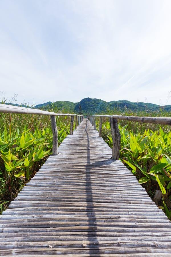 木桥和风景 库存照片