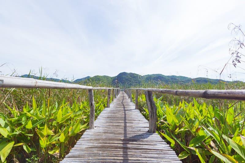 木桥和风景 库存图片