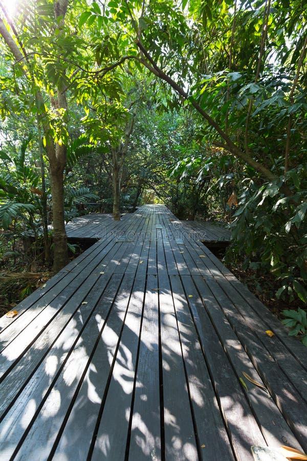 木桥在公园 库存图片