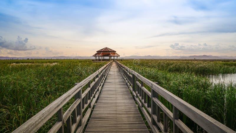 木桥在湖, Khao山姆Roi Yod国家公园 库存图片