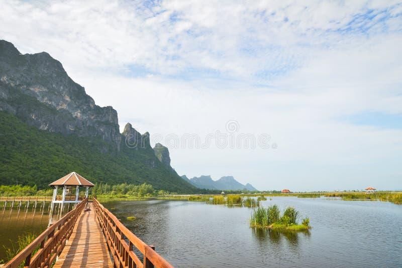 木桥在khao山姆roi yod国家公园的,泰国莲花湖 库存图片
