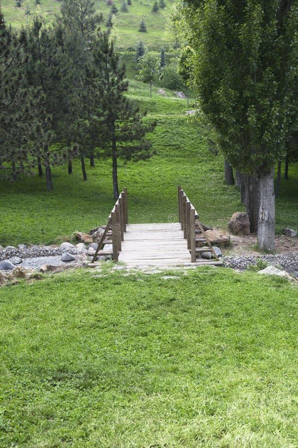 木桥梁在森林里 库存图片