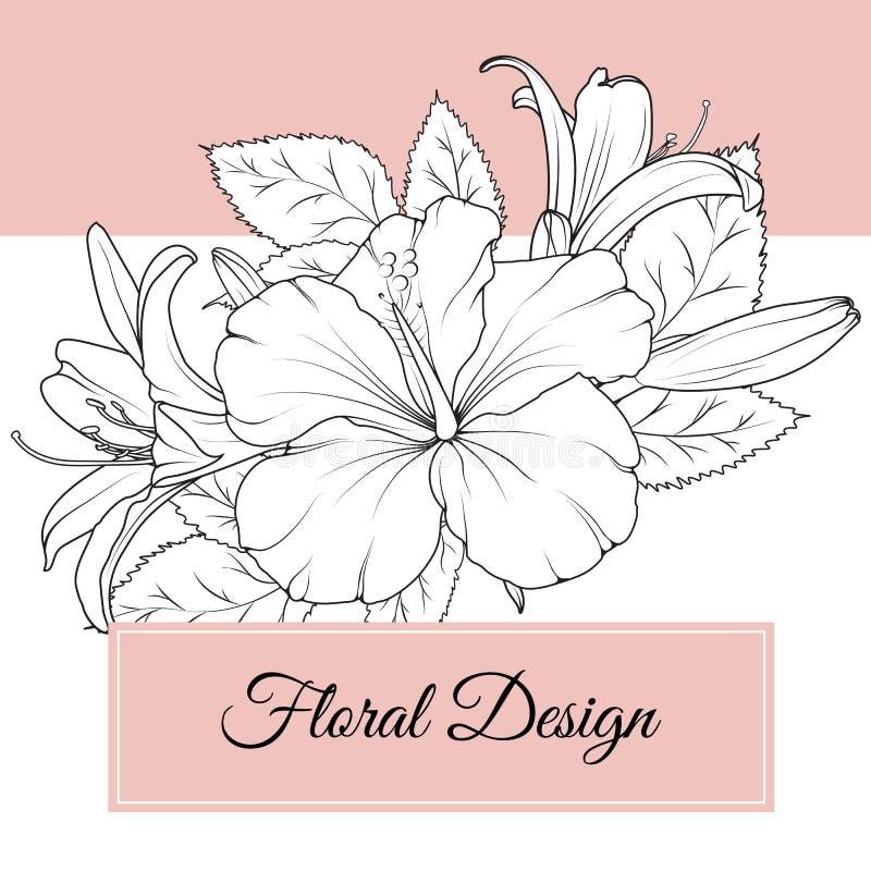 木槿百合开花花卉设计卡片模板 皇族释放例证
