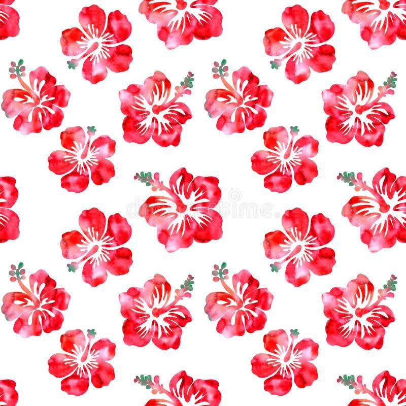 木槿红色花水彩无缝的样式 向量例证