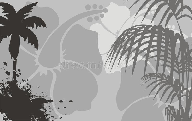 木槿花热带夏威夷人background7 向量例证
