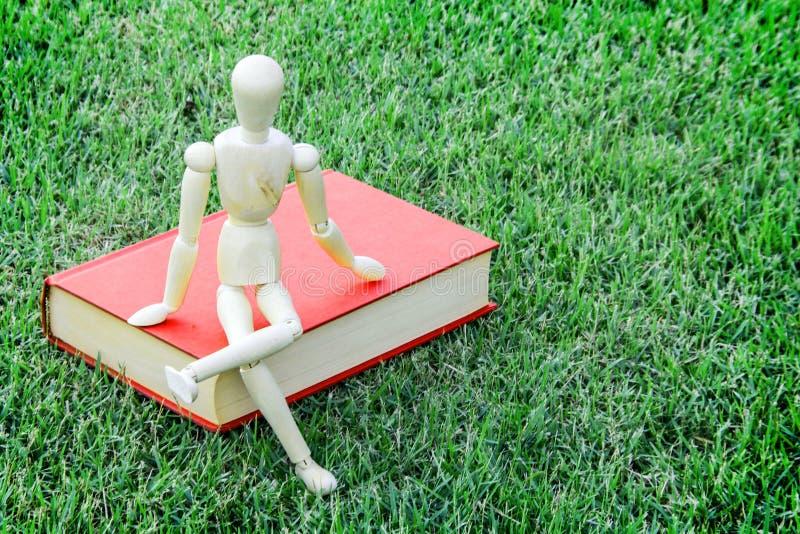 木模型关闭葡萄酒书在绿色公园 免版税库存图片