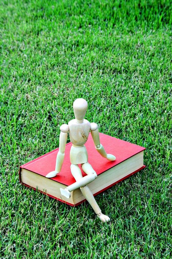 木模型关闭葡萄酒书在绿色公园 免版税库存照片