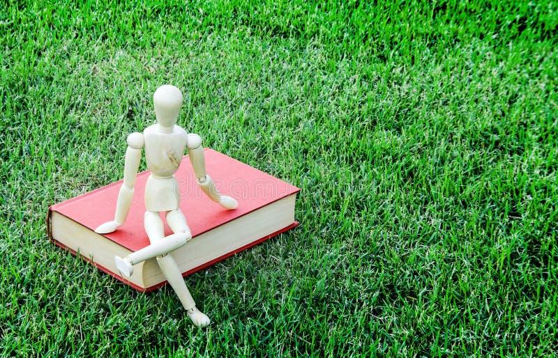 木模型关闭葡萄酒书在绿色公园 库存图片