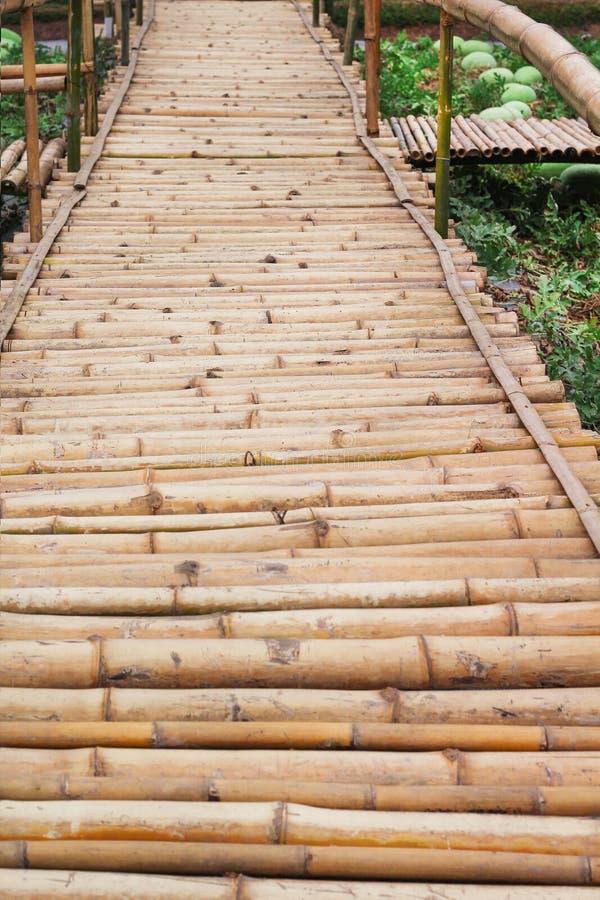 木步行方式样式背景在农场 库存图片
