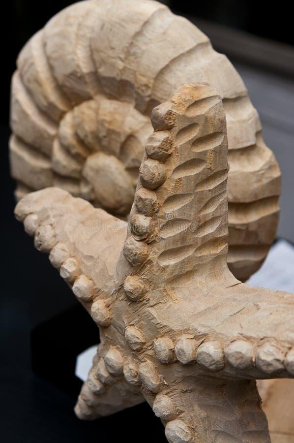 木海星和蜗牛装饰 免版税库存图片