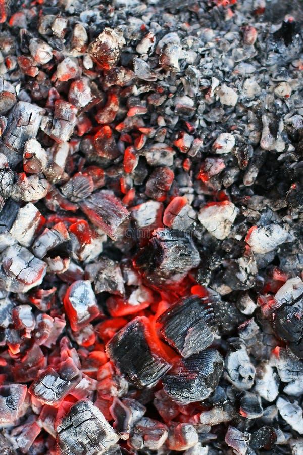 木炭燃烧 库存图片
