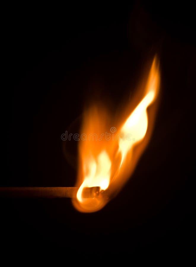 木点燃的火柴 免版税图库摄影