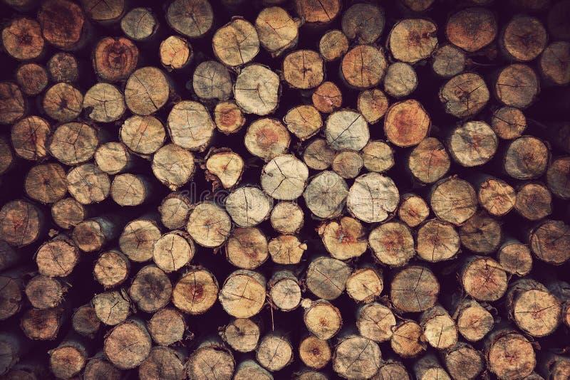 木物质背景 库存照片