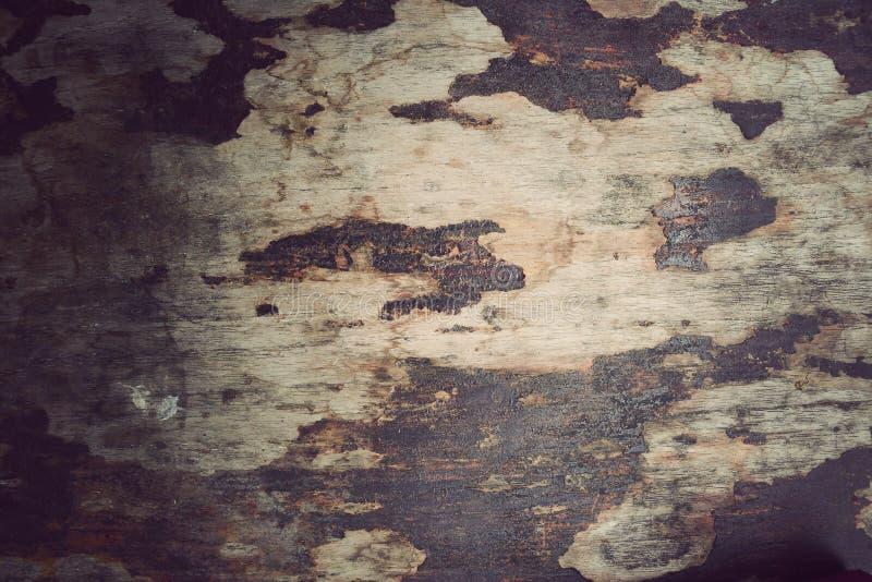 木物质背景,葡萄酒墙纸 免版税库存图片