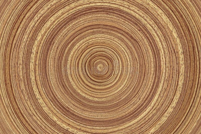 木环形 免版税库存图片