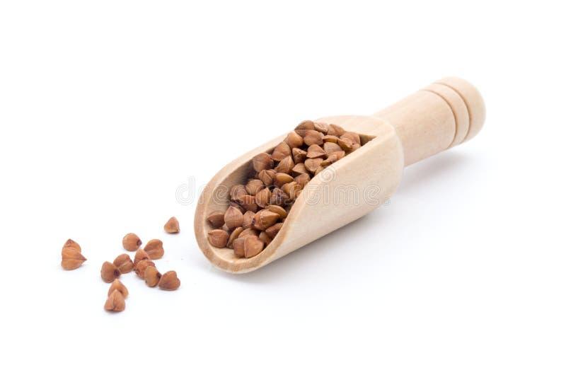 木瓢用在白色背景隔绝的荞麦 免版税库存图片