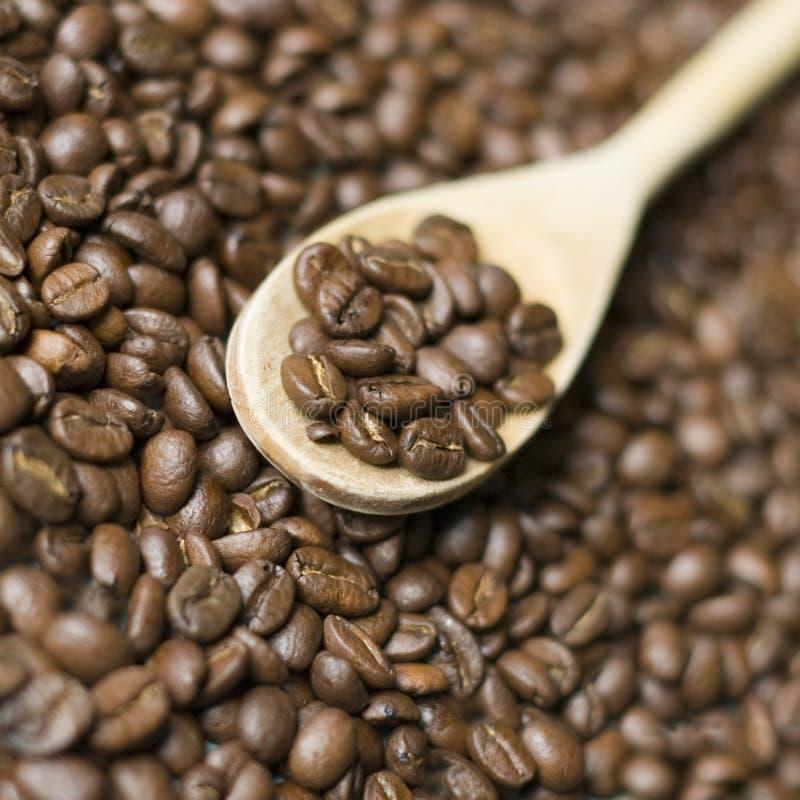 木的咖啡匙 库存照片