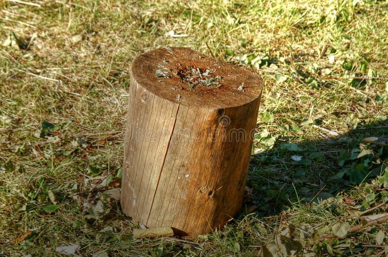木的块 免版税图库摄影