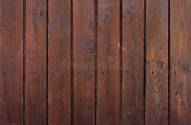 木的模式 库存图片