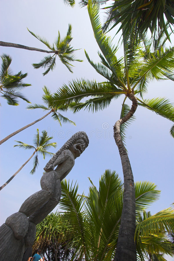 木的神象 免版税库存图片