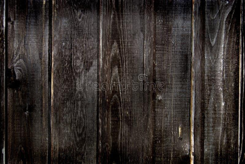 木的纹理 图库摄影