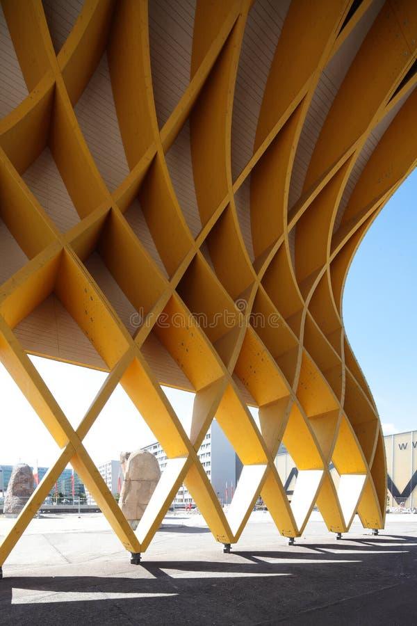 木的结构 图库摄影