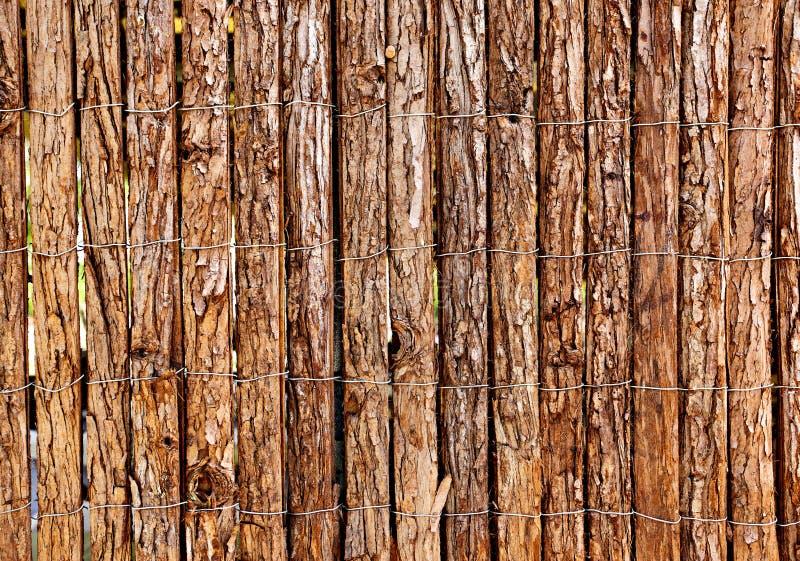 木的范围 库存图片