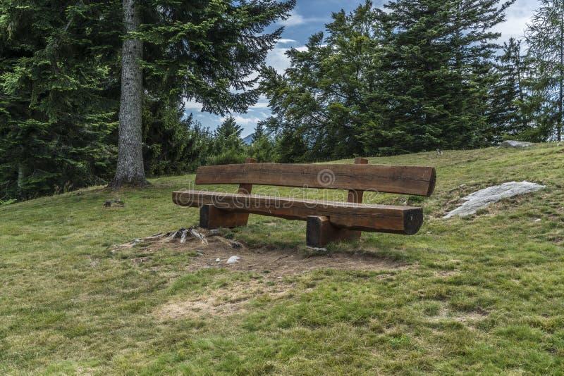 木的长凳 库存图片