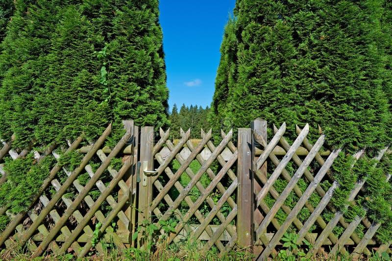 木的门 图库摄影