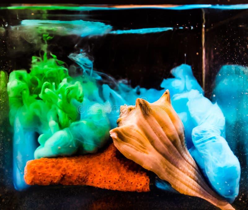 木盆的海洋 库存图片
