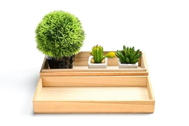 木盘子包含仙人掌罐和空白 免版税库存照片