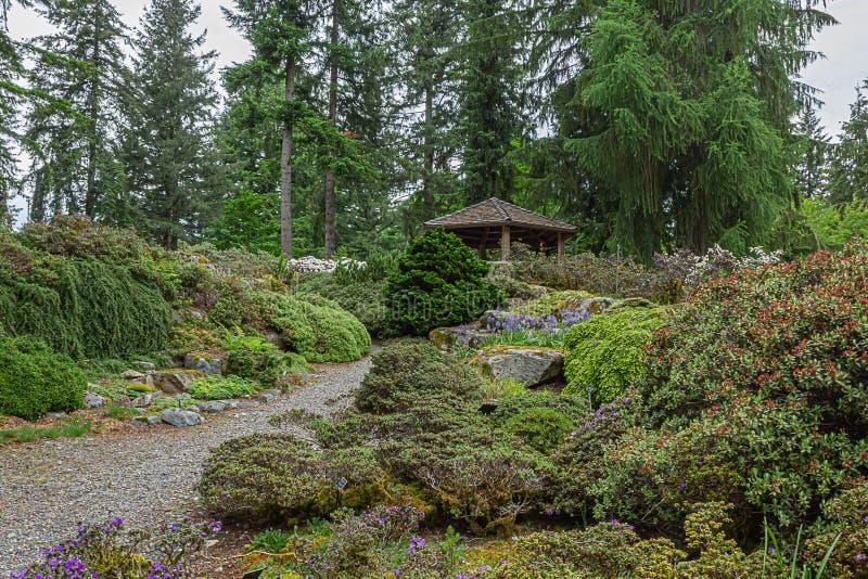 木眺望台被修造在小山顶部 图库摄影