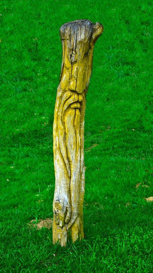 木神象,雕刻在一棵树的树干,在森林草坪 库存照片