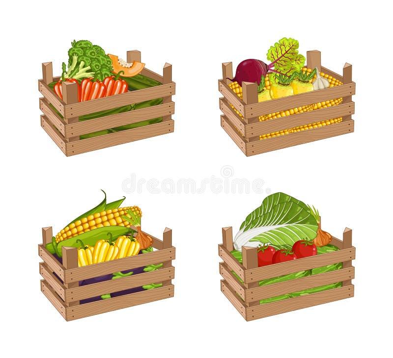 木箱菜集合充分隔绝了传染媒介 库存例证
