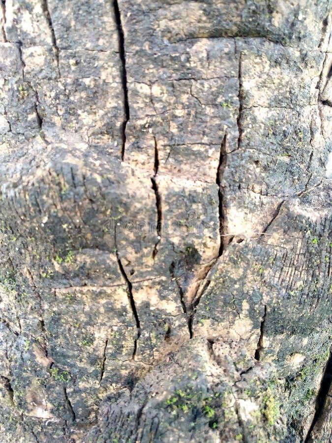 木纹理板条五谷背景、木书桌桌或者地板 老生锈的木头 葡萄酒木纹理 库存图片