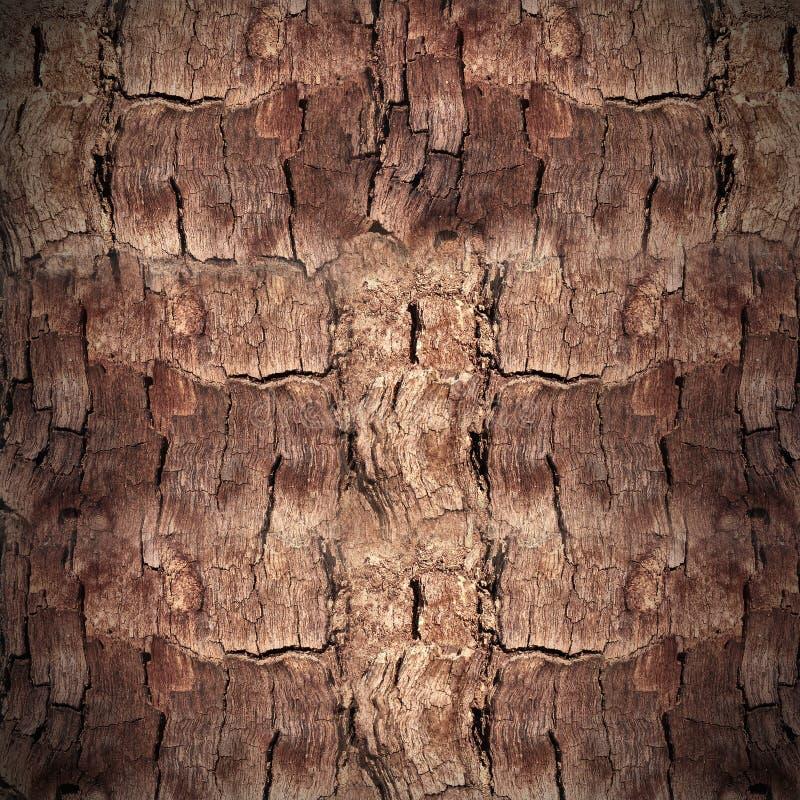 木纹理细节背景 库存照片