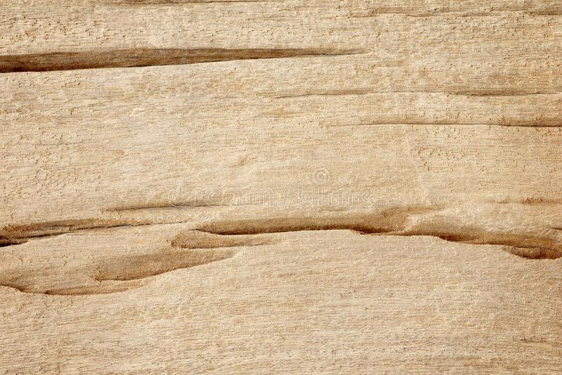 木纹理背景,时间之前腐蚀的木表面 免版税库存照片