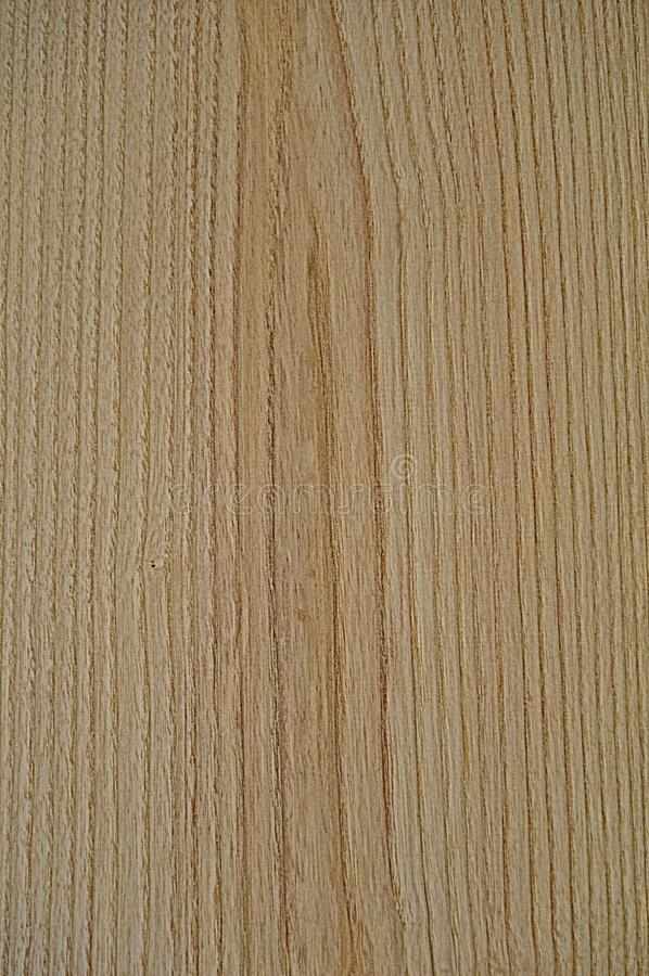 木纹理 画一个木板 灰色和棕色纹理背景 免版税图库摄影