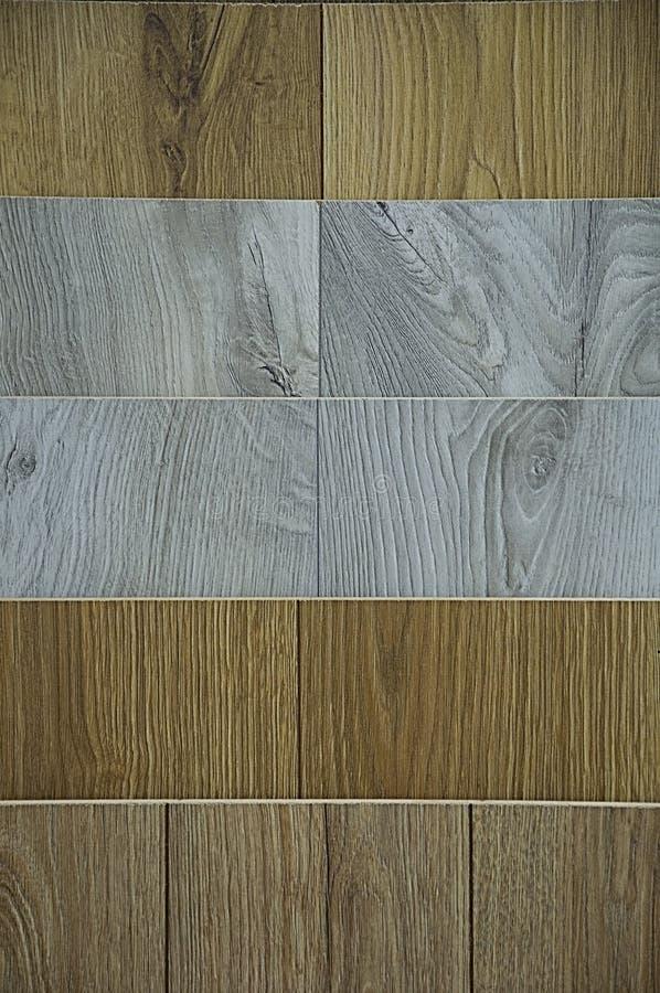 木纹理 背景是白色,棕色和灰色的 有大结 库存图片