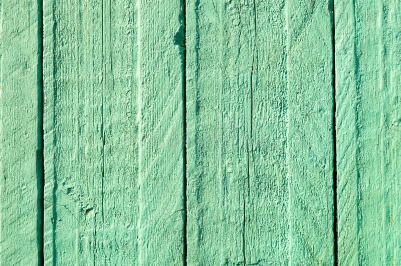 木绿色的纹理 库存图片