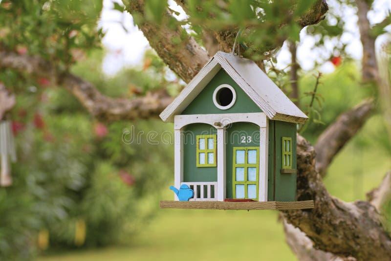 木绿色鸟房子 免版税库存照片