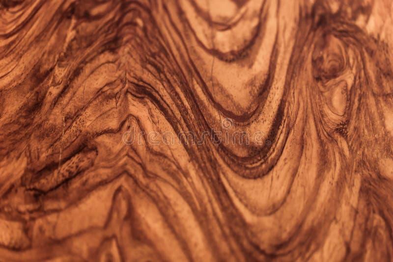 木老年迈的岁月弯曲纹理样式背景 库存照片