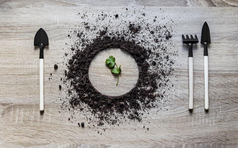木背景概念地面堆了圈子盘匙子叉子放置纹理的叉子犁耙种植新芽绿色叶子 免版税库存图片