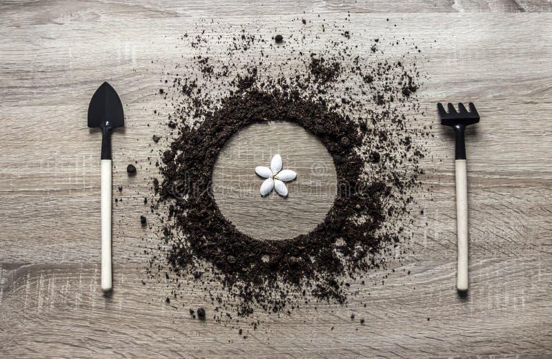 木背景概念地面堆了圈子盘匙子叉子种植中心种子花瓣弹簧的犁耙纹理水平 库存图片