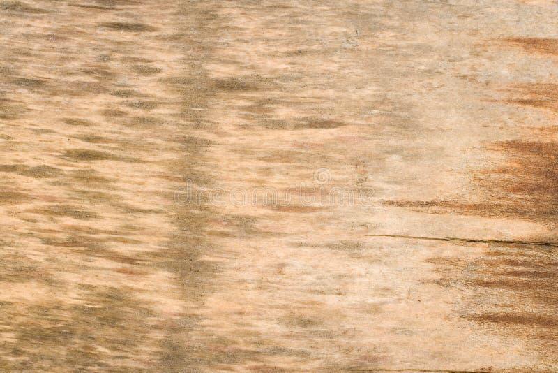 木背景自然纹理的木材 库存图片