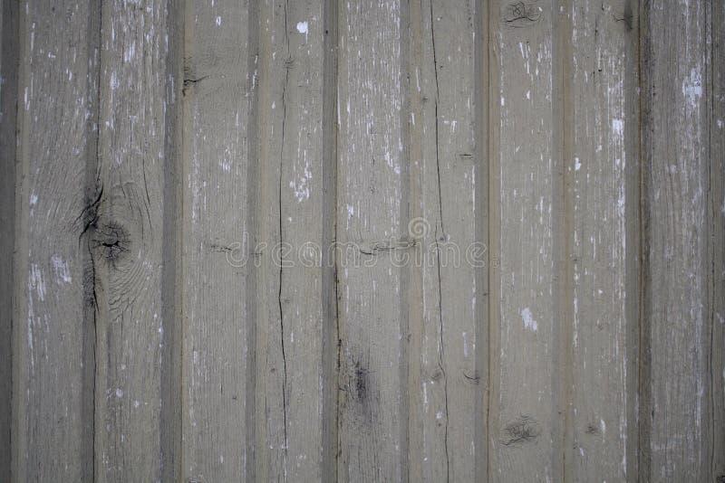 木背景 免版税库存图片