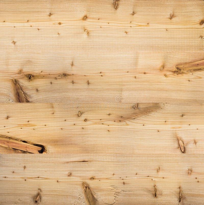木自然落叶松属固体纹理 免版税库存照片