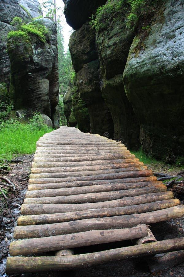 木英尺的路径 免版税库存图片