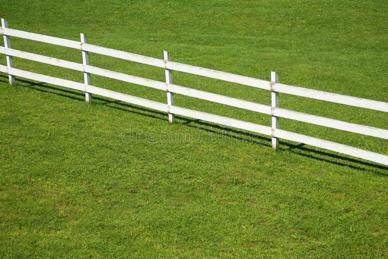 木范围绿色的草坪 免版税库存图片