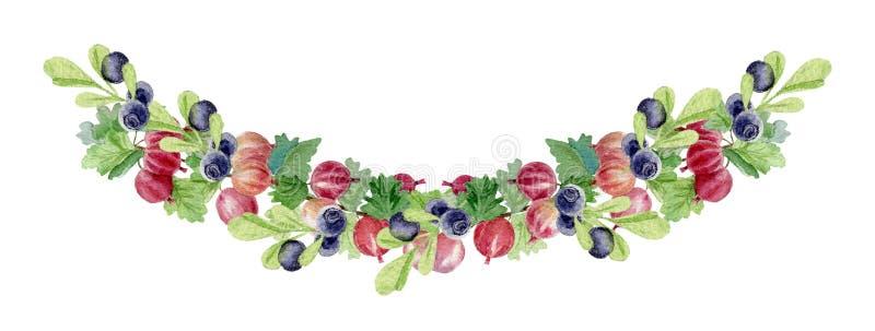 木莓果手画水彩花圈  库存例证